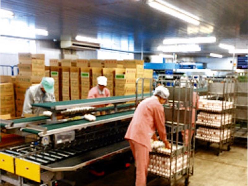 有限会社 元木養鶏 市原GPセンターの求人画像