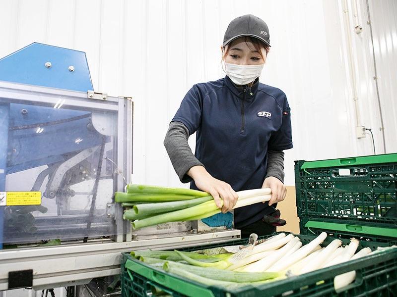 FPパッケージ株式会社 平塚パッケージセンターの求人画像